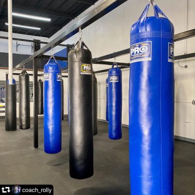 24 Punching-kicking Bags available